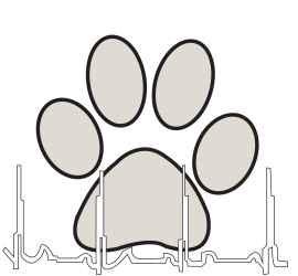 Cardiology for Pets in Reno